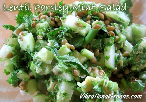 Lentil Parsley Mint Salad